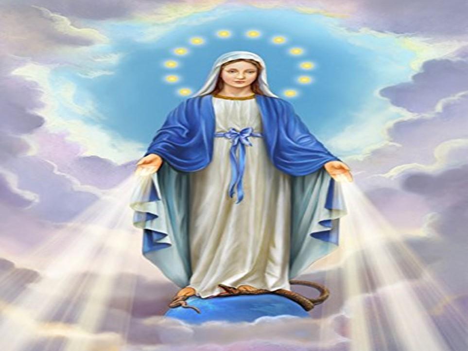 Oração à Virgem Maria para alcançar graças