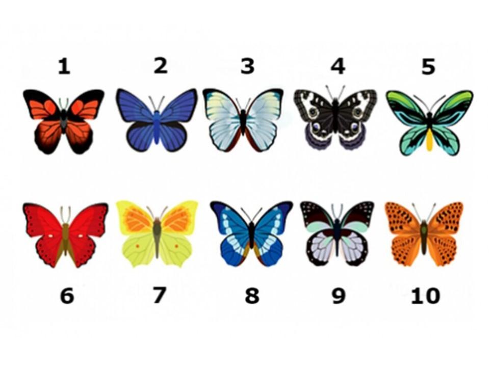 A borboleta que atrai mais atenção revelará muito ao seu poder como mulher.