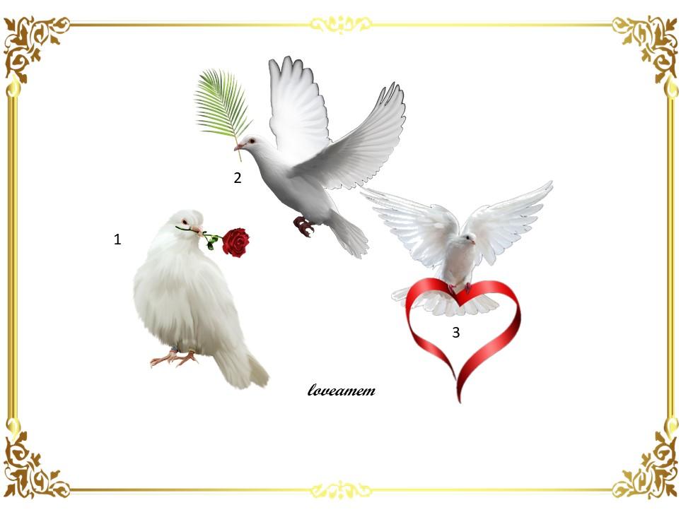Escolha sua pomba da paz e receba uma linda mensagem de luz…