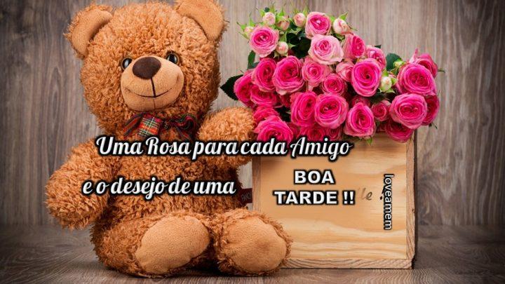 Uma rosa para cada amigo e o desejo de uma boa tarde