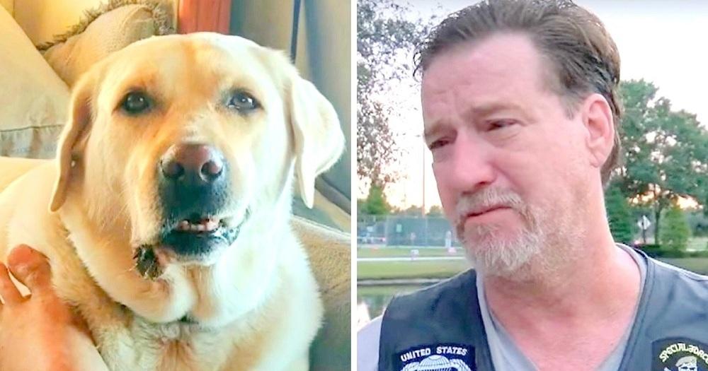 Veterano ficou na UTI após acidente de carro, então um vizinho abandonou o cão dele