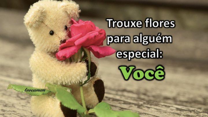 Essas flores são para você amigo . Que Deus te Abençoe !