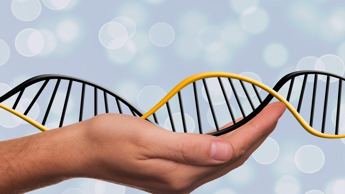 Paciente Brasileiro com cancro terminal curado com terapia genética pioneira